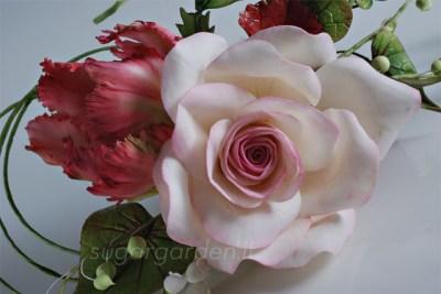 Rosa - Composizione