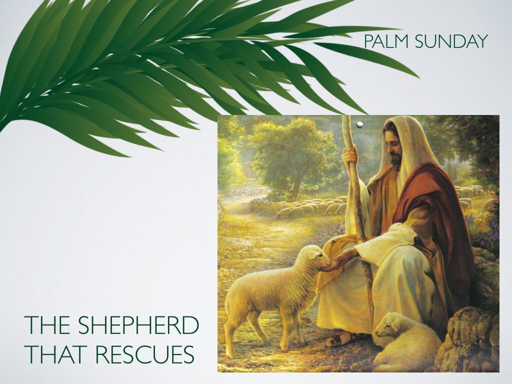 Palm Sunday.004