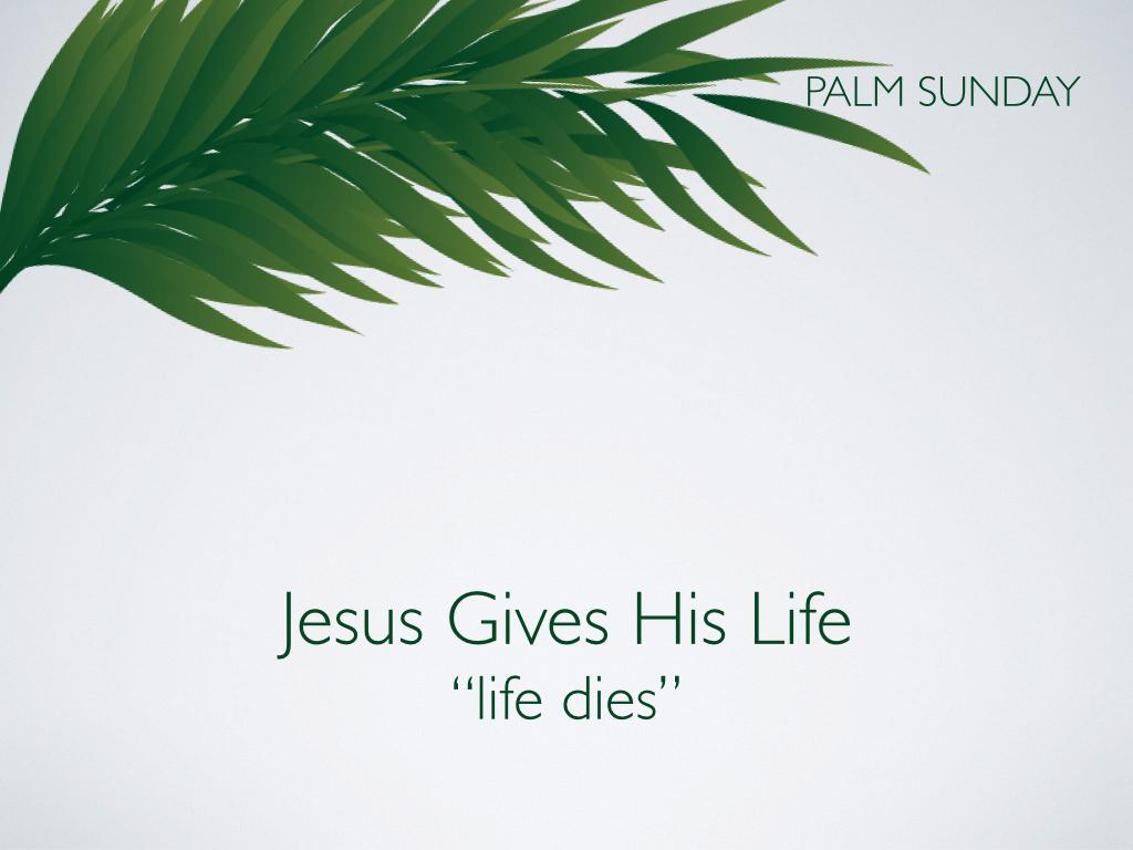 Palm Sunday.009