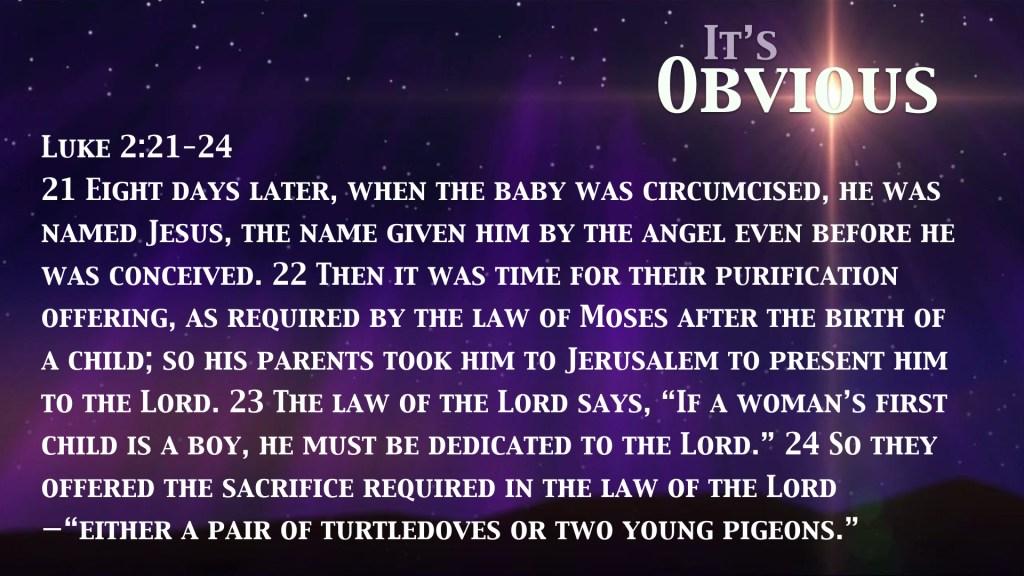 IT'S OBVIOUS Simeon's Story.004