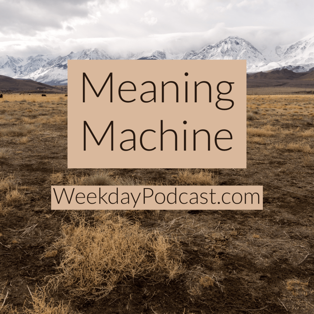 Meaning Machine