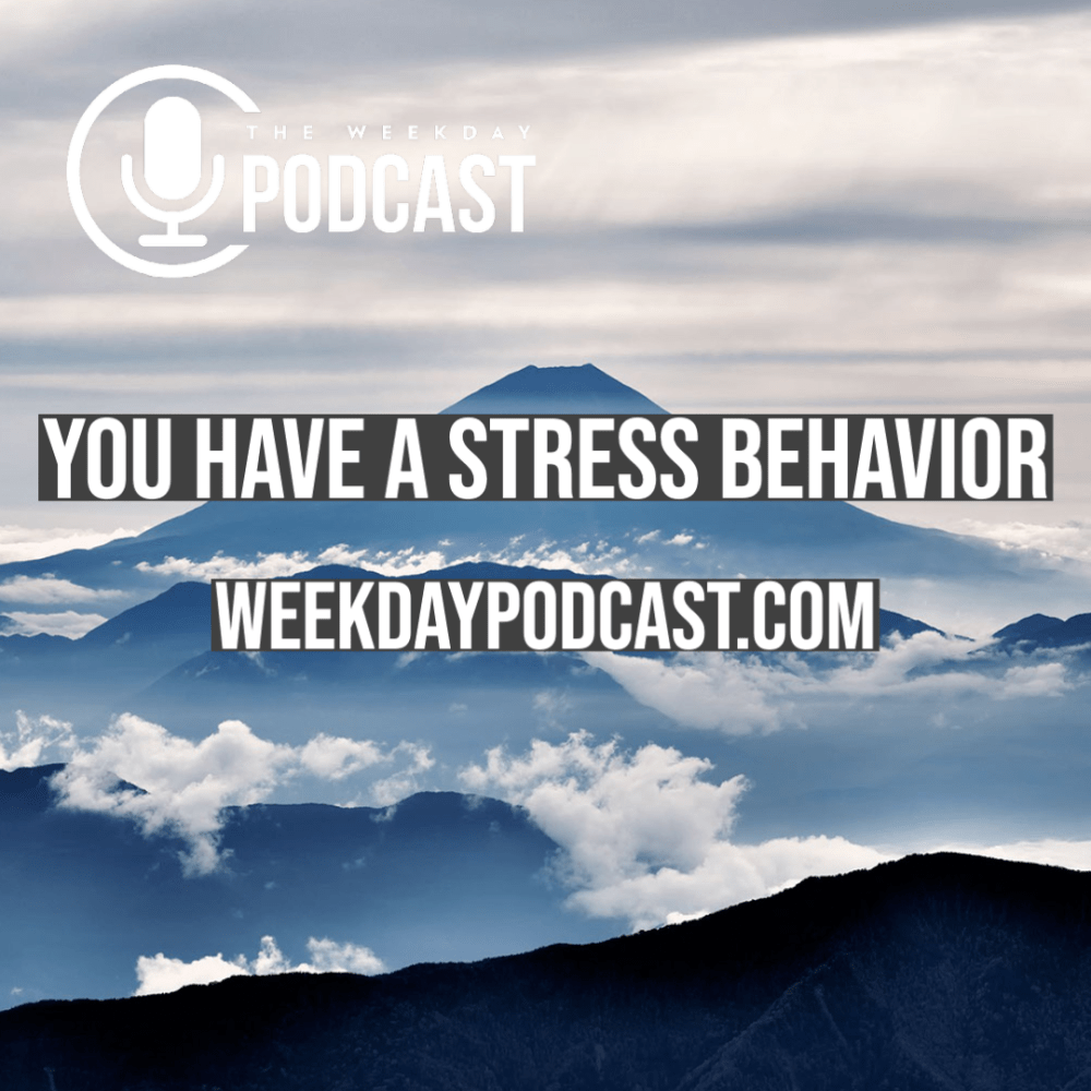 You Have a Stress Behavior Image