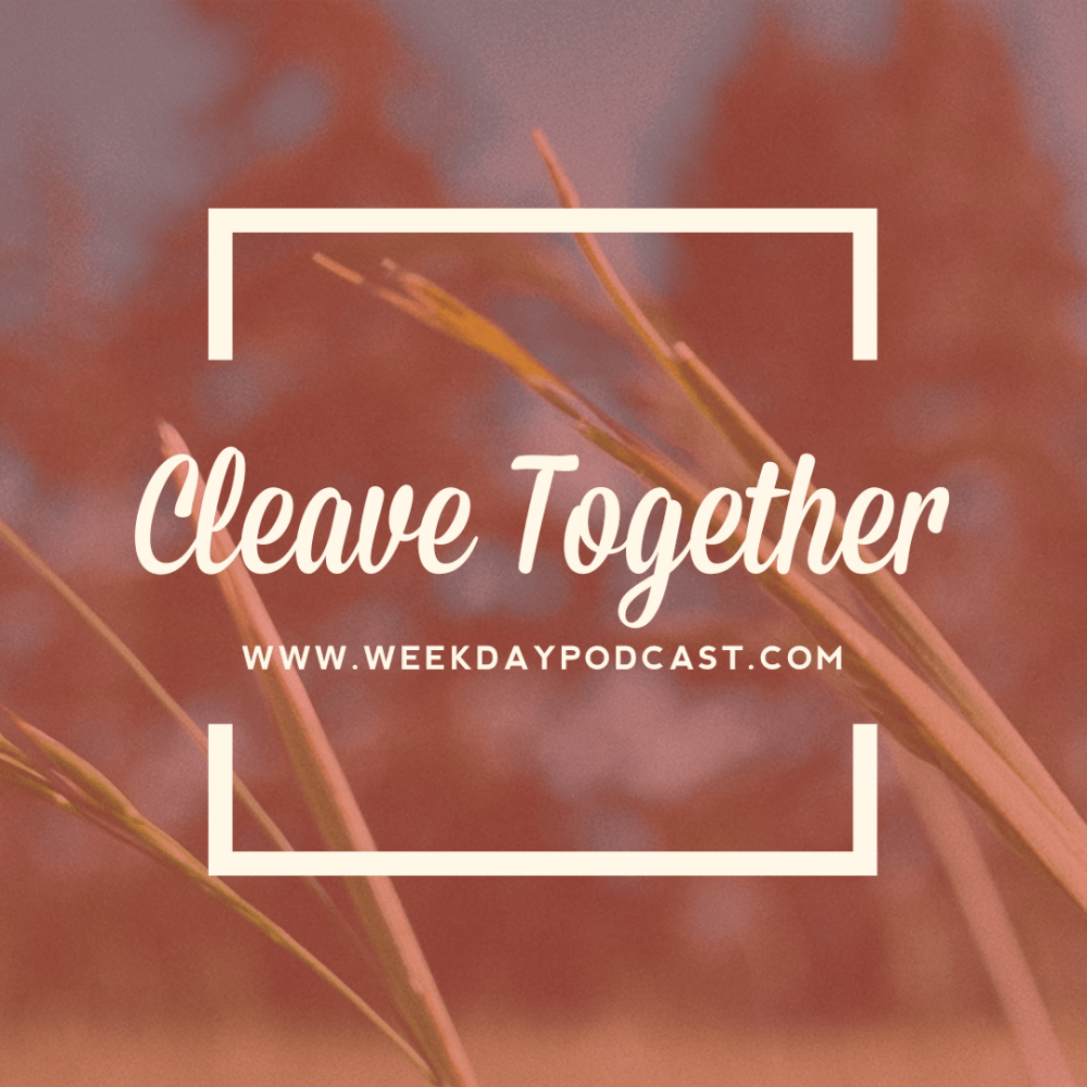 Cleave Together - - October 17th, 2017