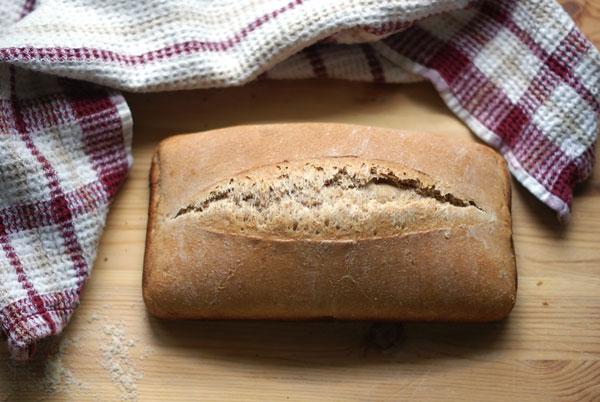 whole wheat loaf