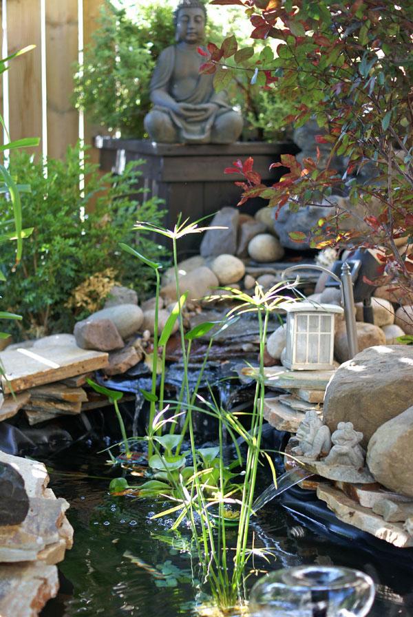 pond&waterfall