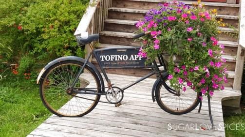 tofino-view3