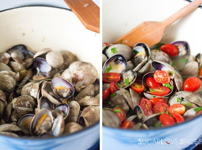 Steamed clams in wine tomato sauce