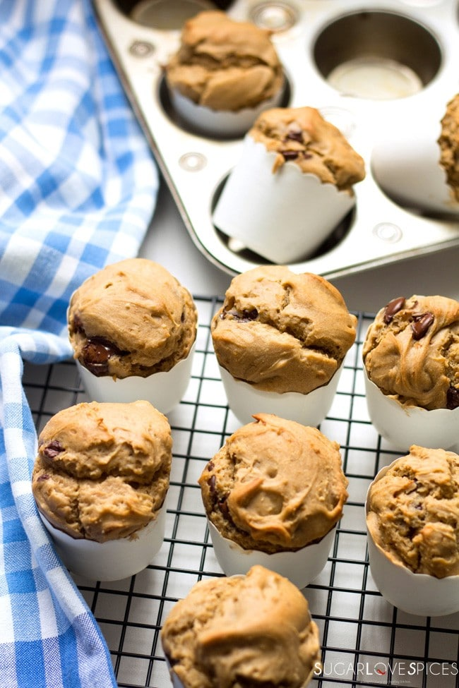 Buckwheat Dark Chocolate Chip Muffins