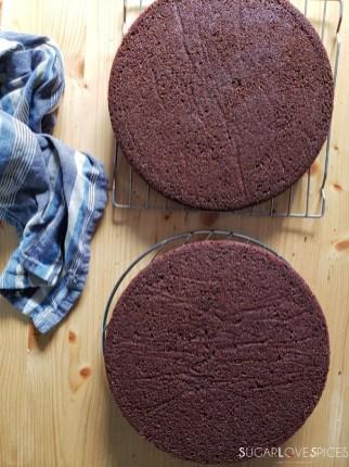 Yogurt Cream Chocolate Ganache Cake with Field Berries-cakes on the rack