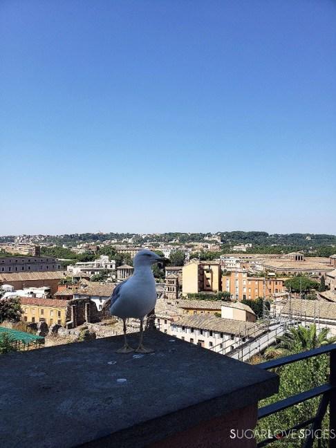 When in Rome, Roma Antica Tour