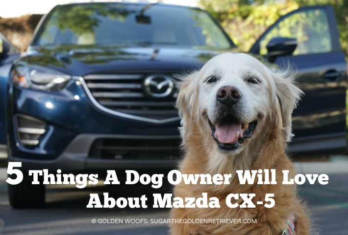 Mazda Cx 5 Awd >> 5 Things A Dog Owner Will Love About Mazda CX-5 #DriveMazda - Sugar The Golden Retriever