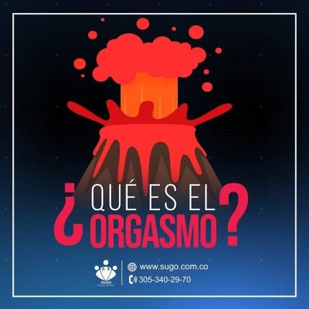 [object object] El Orgasmo 60350429 2367668943295513 7369401059384492032 n 300x300