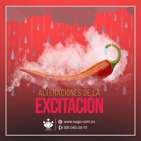 la excitación La Excitación excitacion 3 300x300