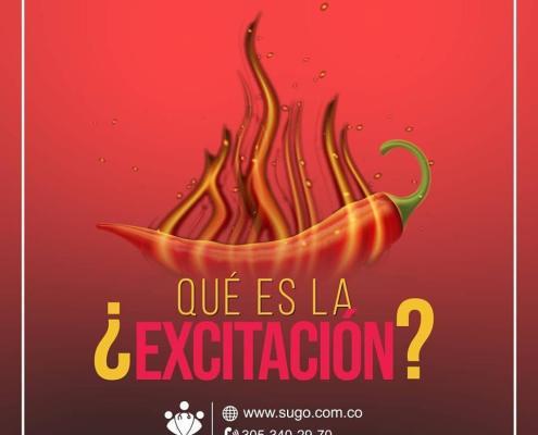 ¿Qué es la excitación?