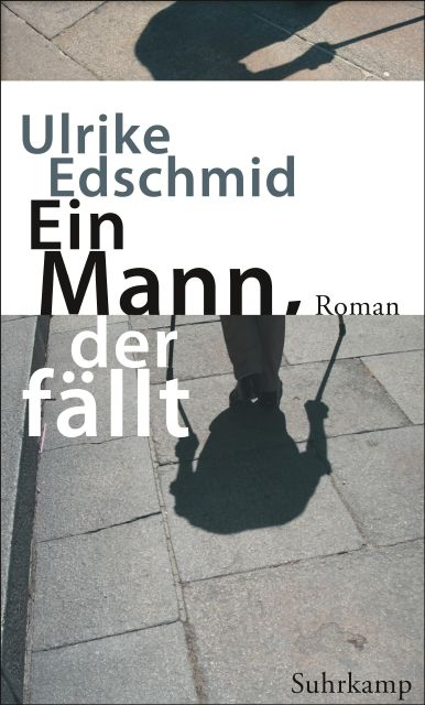 Image result for A man who falls + Suhrkamp