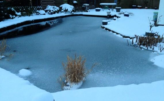 Schnee und Eis am Koiteich