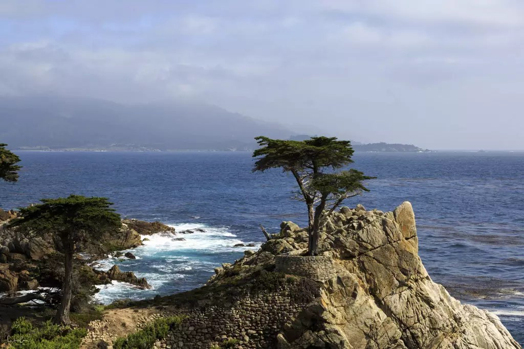 Things to do in Monterey in 2 days