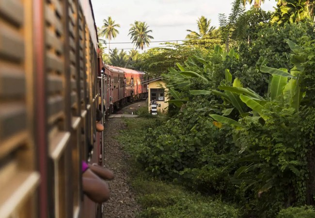 Sustainable travel. An expert reveals how to be a responsible traveler
