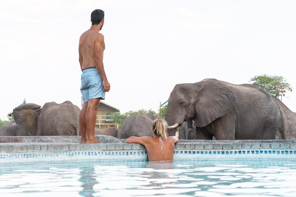 Elephants Sands Campsite in Botswana
