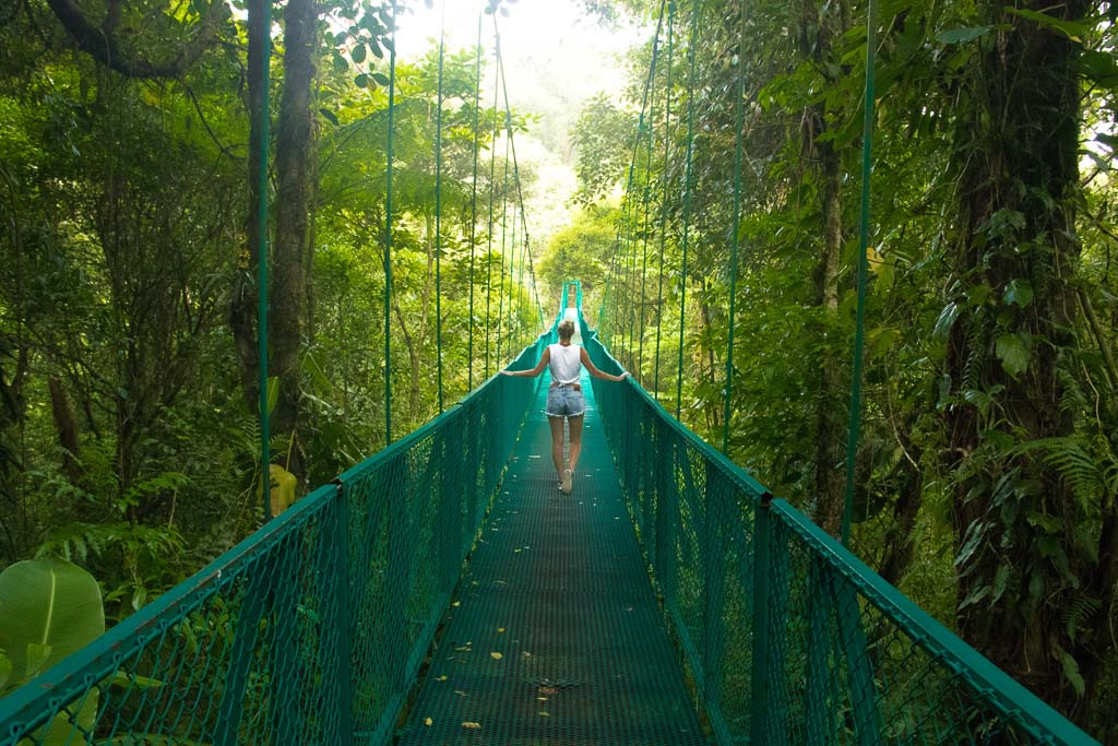 Hanging bridges in the Monteverde Cloud Forest Reserve