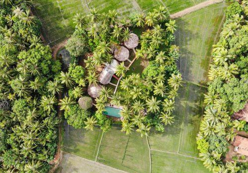 rice rice villas