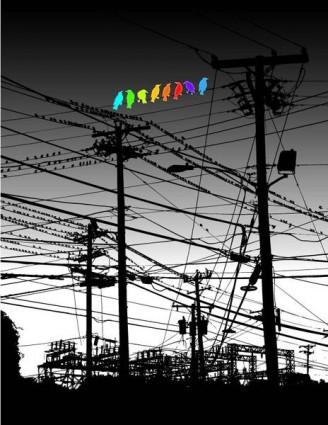 bird_color_119645