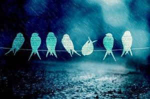 hindi poem rain