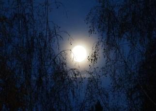 Hindi poem on Moon