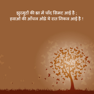 Night Hindi Poem