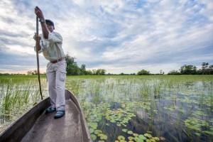 Botswana Safari nr 1