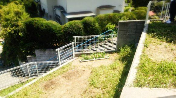 ミニ菜園をしたりプールをしたり!きっずはんど