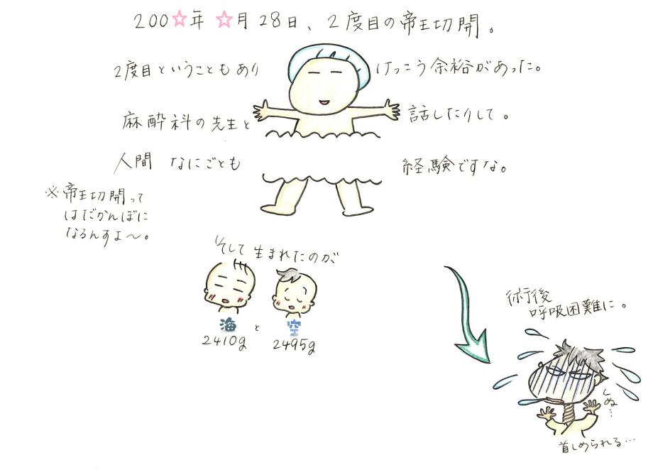 しきしの9