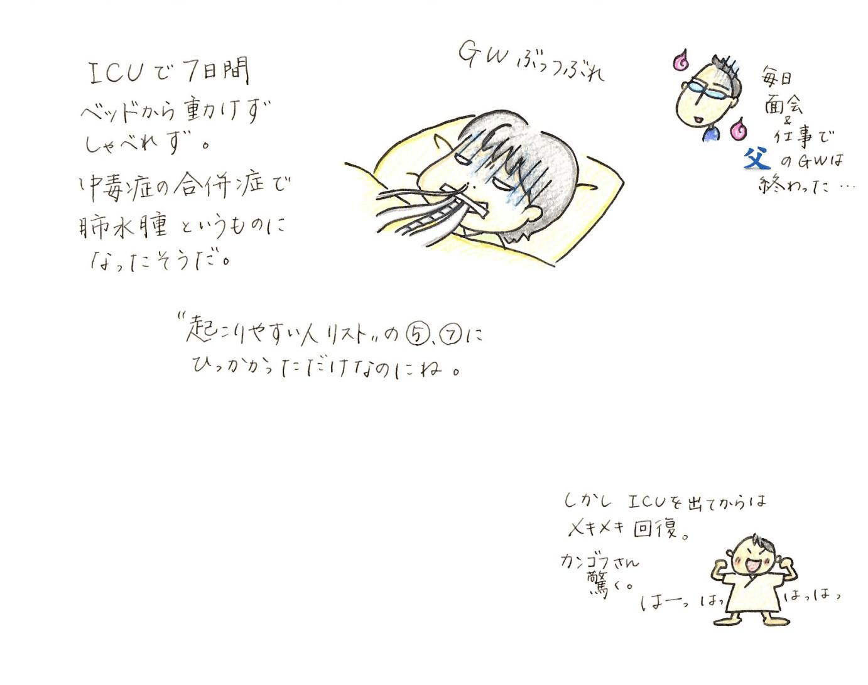 しきしの10
