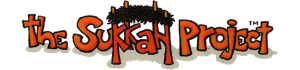 Klutz-proof sukkah kits for sukkot