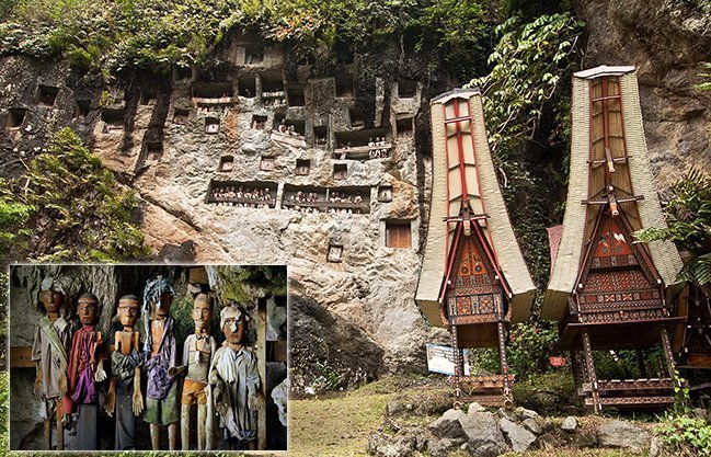 Toraja Tour visiting Lemo Stone Grave