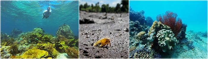Tumbak Underwater Ecotourism