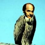 Pierluigi Bersani avvoltoio