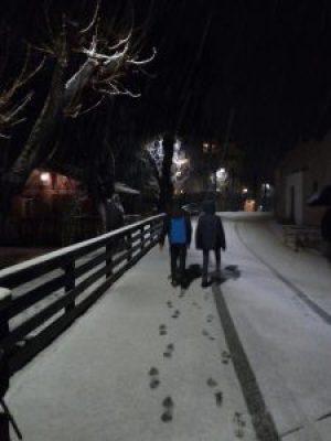 Impronte e neve