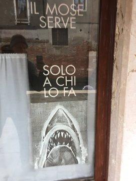 Venzia poster contro il Mose