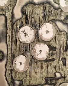 chimigrammi (5)