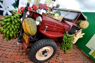 """The famous """"Willy""""s Jeep"""" an Icon of the Colombian Coffee region"""