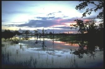Sunset, Amazon, Brazil