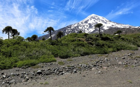 Lanin national park sits at the base of the Lanin volcano