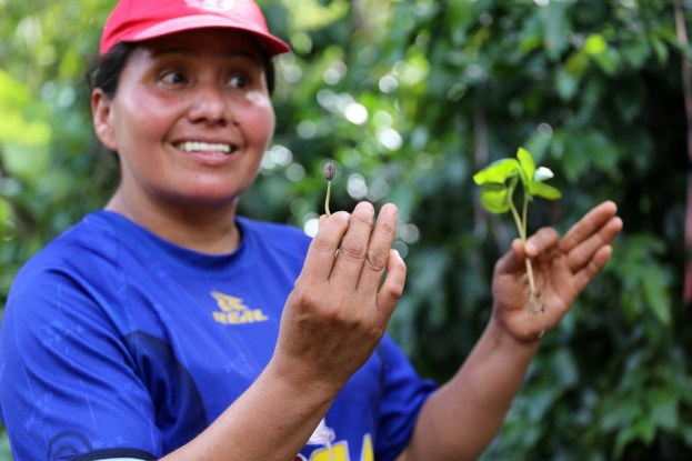 Having a lesson in organic coffee farming in Cuzco, Peru