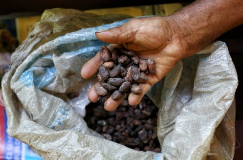 Who doesn't like chocolate? Here you can see the rich cocoa beans before they are transformed into everybody's favourite treat, Cuzco