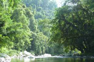 The tranquil Buritaca River, near the Wiwa Camp during the Lost City Hike in Colombia