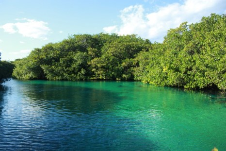 Arriving at a beautiful cenote (sinkhole) in Yucatan