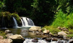 Inviting waterfalls in Los Tuxtlas Biosphere, Mexico