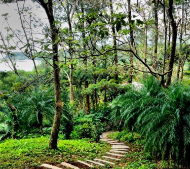 Lush jungle treks in Los Tuxtlas biosphere, Veracruz, Mexico