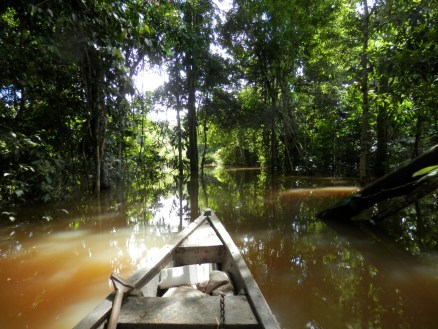 Canoeing through the Yahuarcaca lakes in the Amazon Rainforest